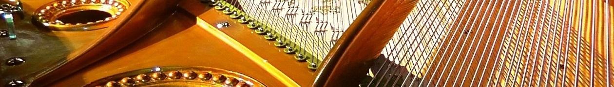 Elza Ritter Piano Lessons